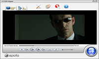#1 DVD Ripper preview window